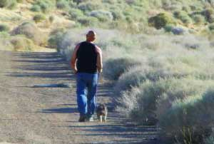 walking your dog in the desert